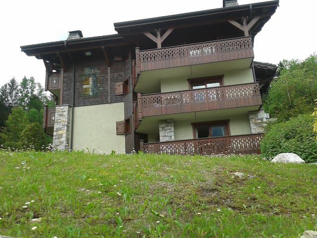 VUE CHAINE MONT BLANC,EXITANT !  - Les Houches - Blockhütte