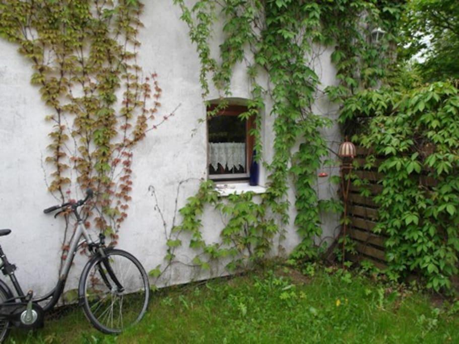 Fahrräder können ausgeliehen werden. In 30 Minuten am weißen Ostseestrand (ein Geheimtip, den nur Einheimische kennen)
