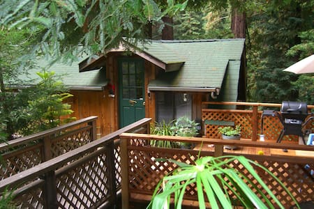 Love Shack Cabin in the Redwoods