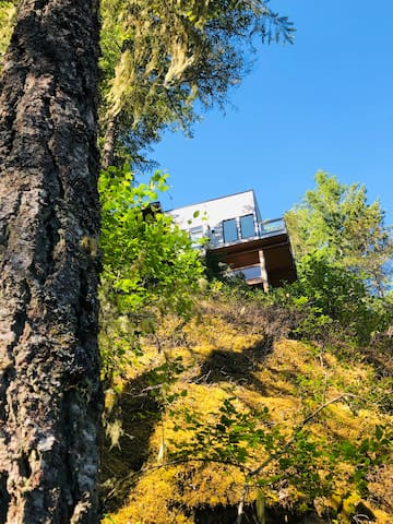 View looking up to Treehouse, from stairs up rock cliff  coming from dock