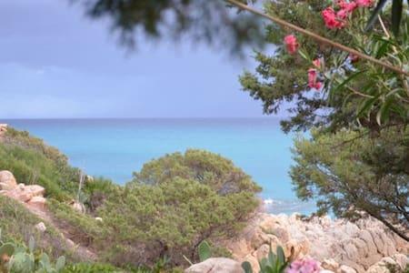 B&B proprio sul mare Camera Azzurra - Cala Liberotto