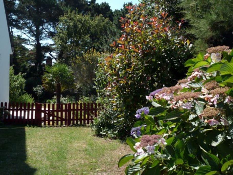 Le jardin autour de  la maison