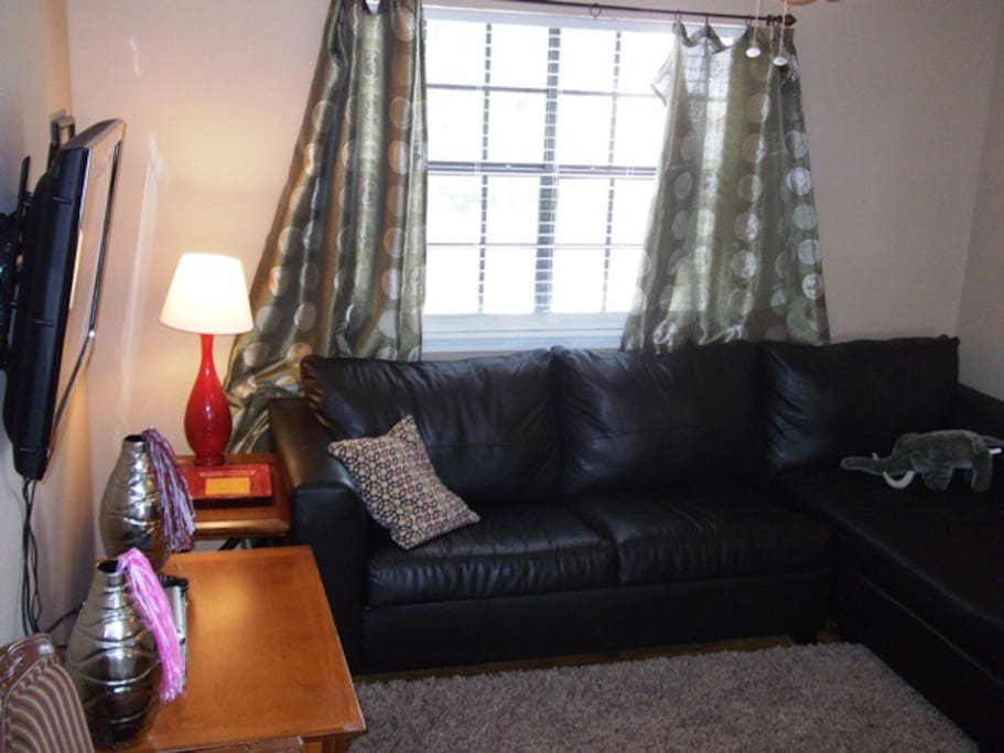 Living area with flatscreen TV and full sleeper sofa
