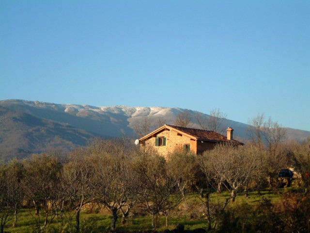 Farmhouse in olive and fig orchard - Cuacos de Yuste