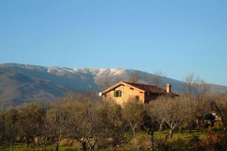 Farmhouse in olive and fig orchard - Cuacos de Yuste - Hus