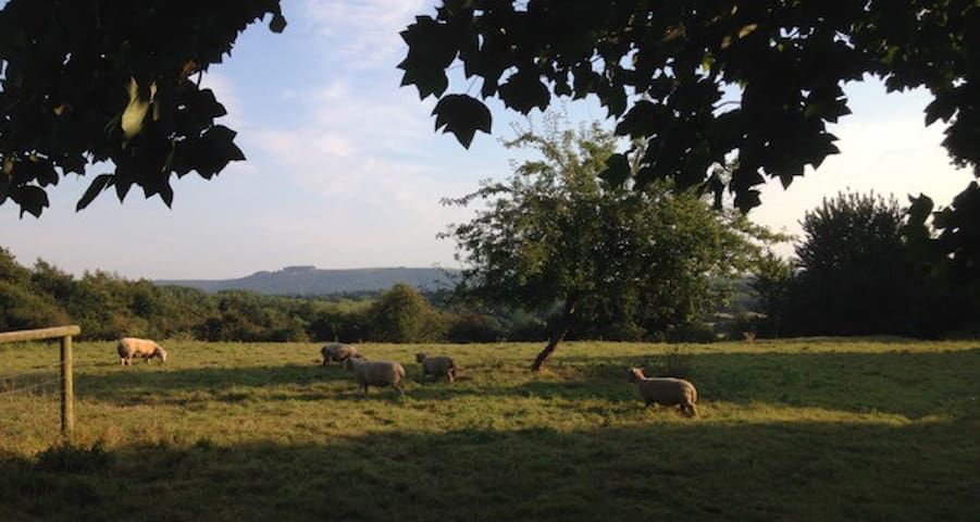 Rural peace and quiet with magnificent views - Pulborough - Apartament