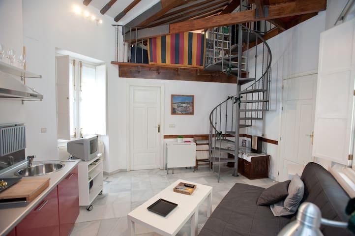 nice loft it the Center, wifi