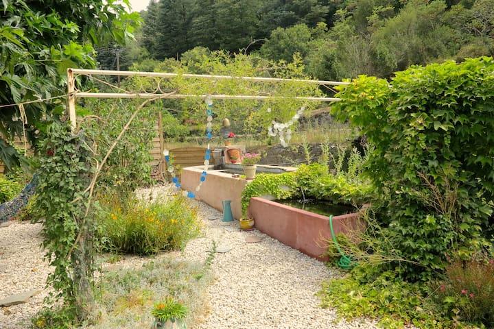 Deux petits bassins dans le jardin avec le bruit de l'eau qui coule...