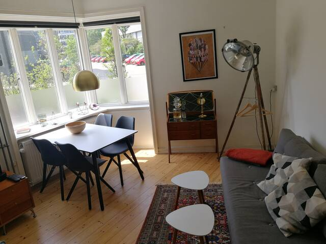 Cozy and spacious ground floor apartment in CPH