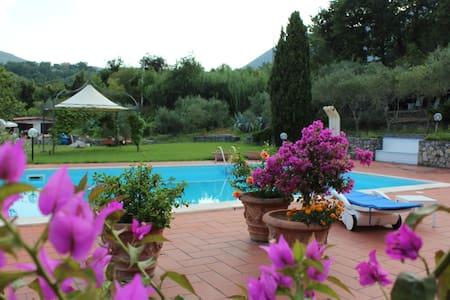 """Villa with swimming-pool """"Le Due Querce"""" - San Giovanni A Piro"""