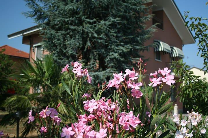 Villa Oleandri - appartamento Bamboo