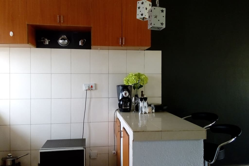 Open Kitchen with Fridge, Coffee maker, Sandwich maker, Blender, Electric cooker and Gas cooker