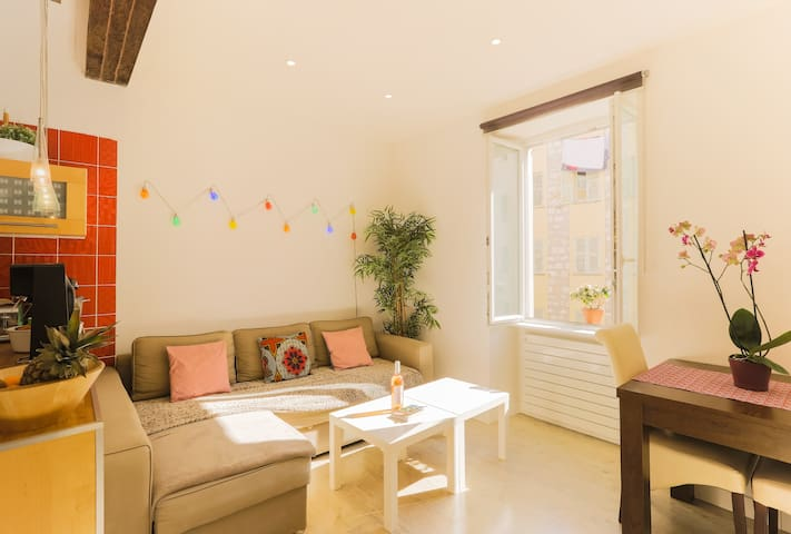 Logement calme, spacieux & cosy au centre de Nice - Nice - Leilighet