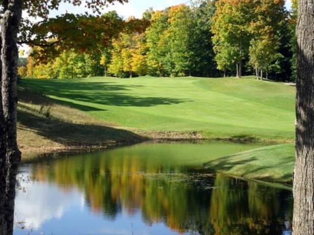 '5 o'clock Somewhere' Cedar River Golfside Condo steps to Golf & Skiing