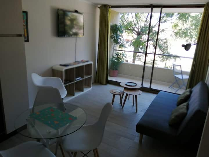 Beautiful apartment, historical centre of Santiago