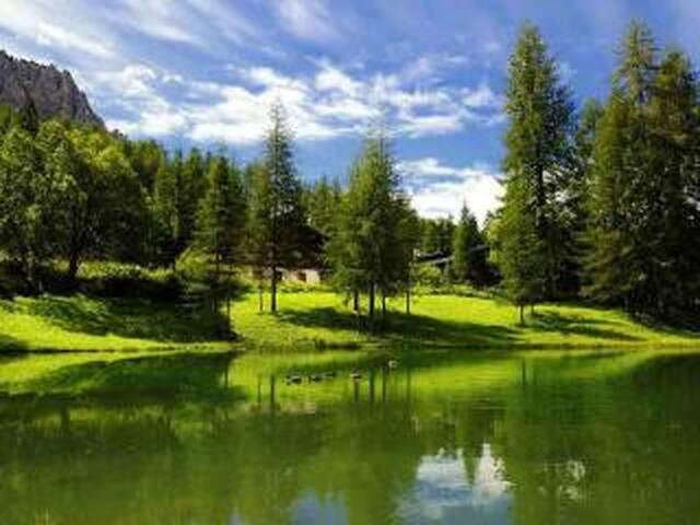 Chalet immerso nel verde ideale per il relax - Cortina d'Ampezzo - Hytte (i sveitsisk stil)