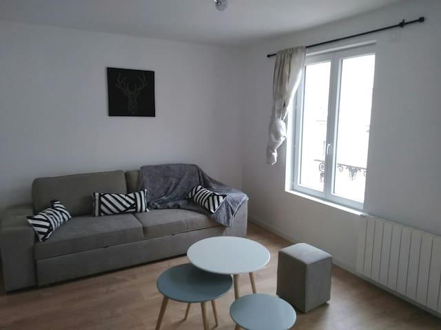 Appartement à 400 m du château d'Amboise