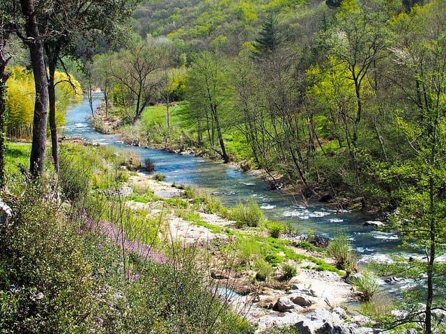La rivière la Salindrenque dans la commune de Thoiras. The river Salindrenque in the commune of Thoiras.