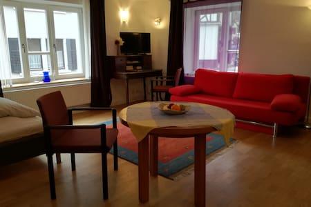Die Schillerstube im Roten Haus - บาเดน-บาเดน - อพาร์ทเมนท์