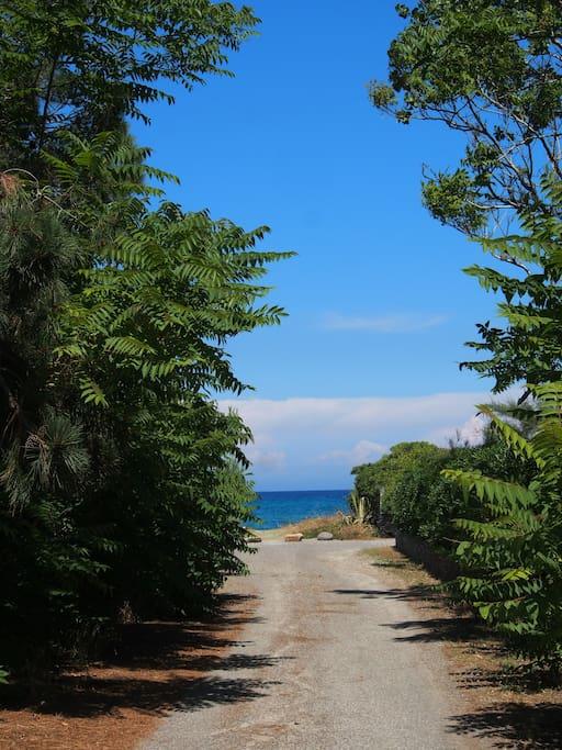 Au bout du chemin, la plage