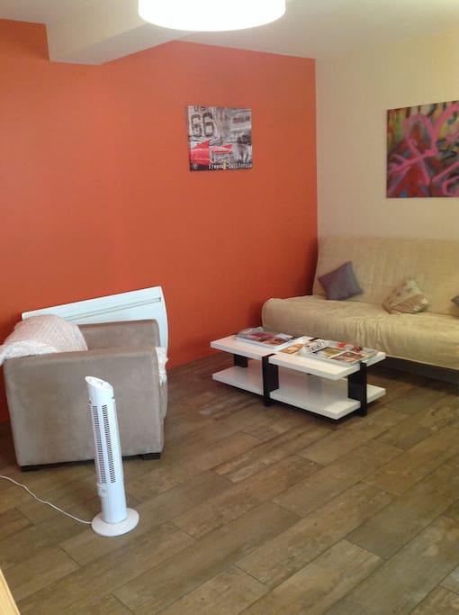 La pièce principale avec le canapé lit (tres bon matelas) et le fauteuil . Nous avons également prévu un ventilateur :))