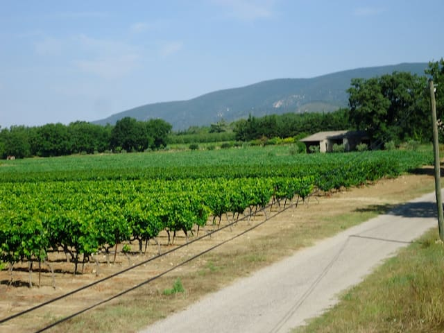 View to the Luberon