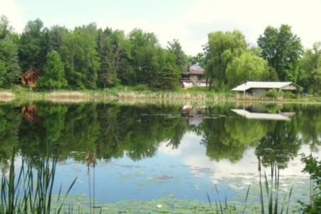 Peaceful Apartment on Nature Sanctuary