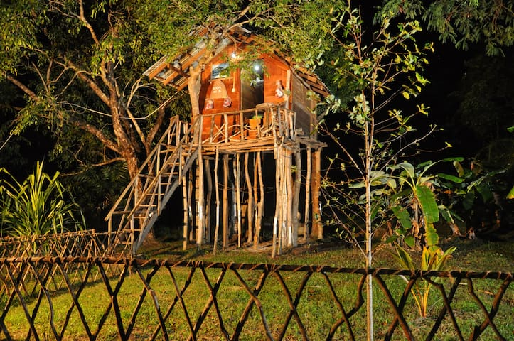 Budget tree house sigiri queens rest
