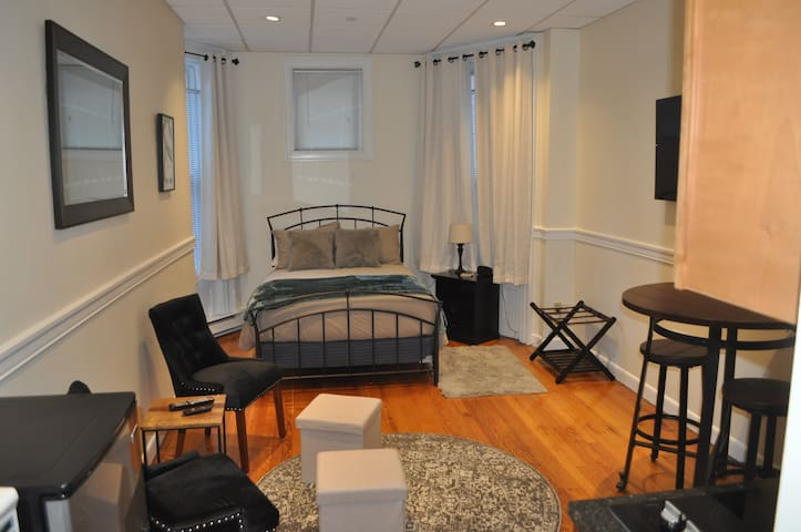 Spacious Studio on Beautiful Newbury Street!