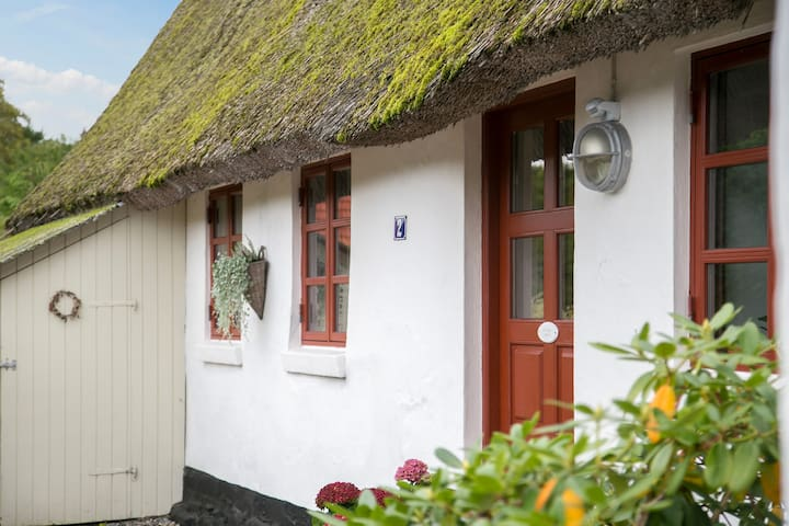 Charming Old Thatched Roof Cottage