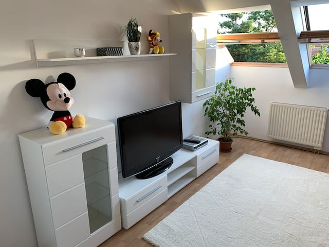 Mickey Mouse House - 80 m2 - Vulkán Spa Thermalbad