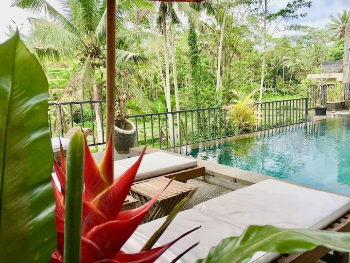 New offer 1bedroom! Pool,Breakfast,Rice Field,Ubud