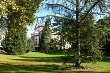 Eco Studio vert calme + Parc au Coeur Centre Ville