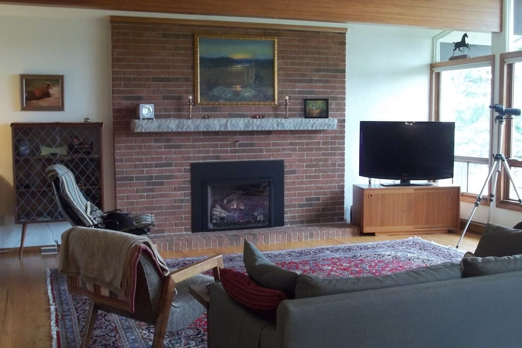 """Living room with gas fireplace and kitty """"Pheng"""" sleeping in chair"""