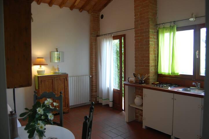La Ca' Solare Cottage Margherita - Montefoscoli  - House