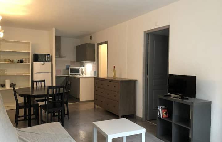 Appartement style cosy de 45 m2 au pied des pistes