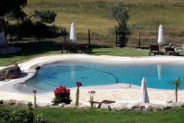 Vakantiehuisje met privé tuin en zoutwaterzwembad