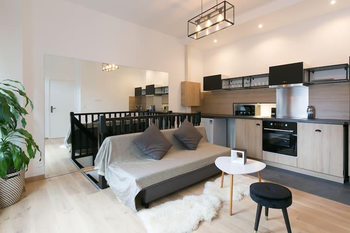 apartment in the center of Paris