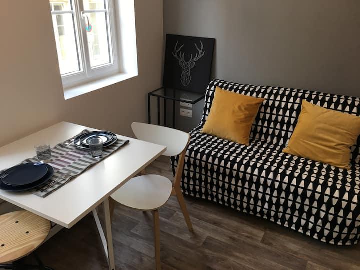 Studio Rouen centre ville refait à neuf !! (302)