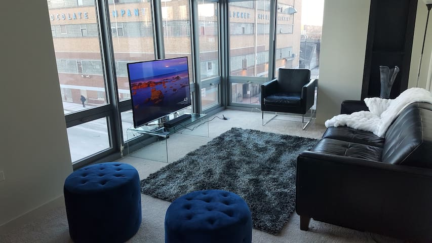 1 BR Spacious West Loop Condo - Walk the City!