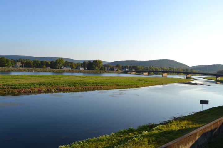 Unrivaled View of the Chemung River from the back deck.