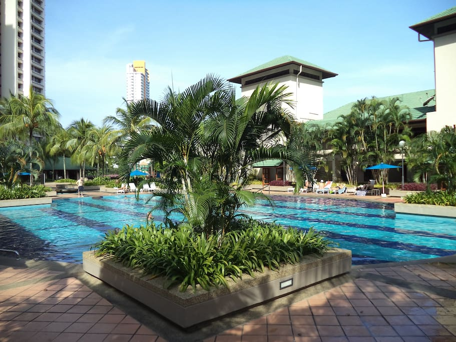 Outdoor big pool area and gym with pool view