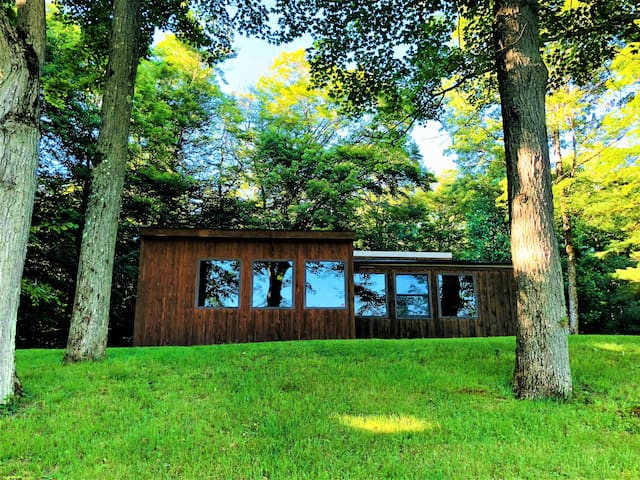 Ellicottville Hiking & Skiing Cabin on 30 Acres