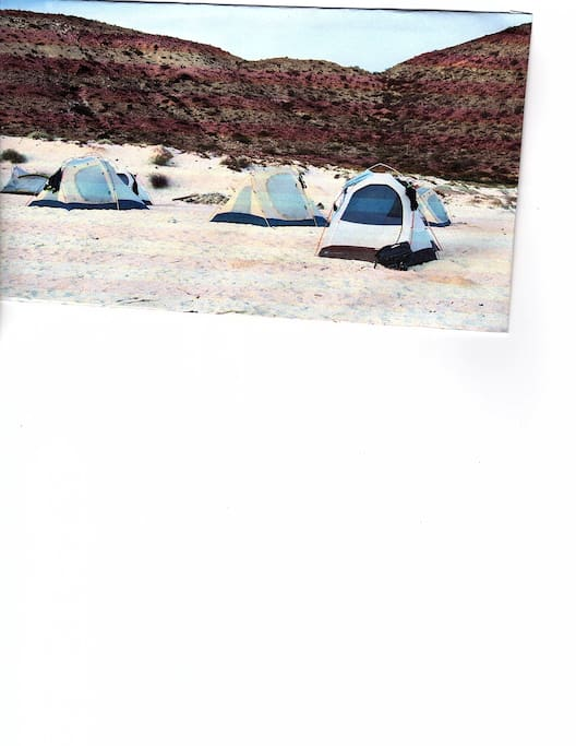 Typical Camping tent lodging grouping
