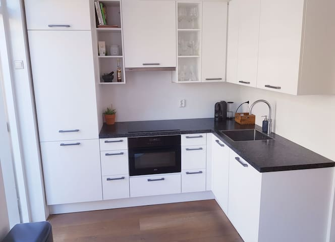 Kitchen with dishwasher, fridge, cooker, oven/microwave