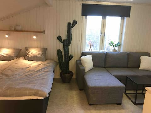 Cozy studio apartment for 4 people near Östersund