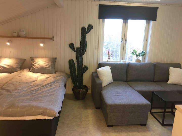 Mysig studio lägenhet för 4 pers nära Östersund