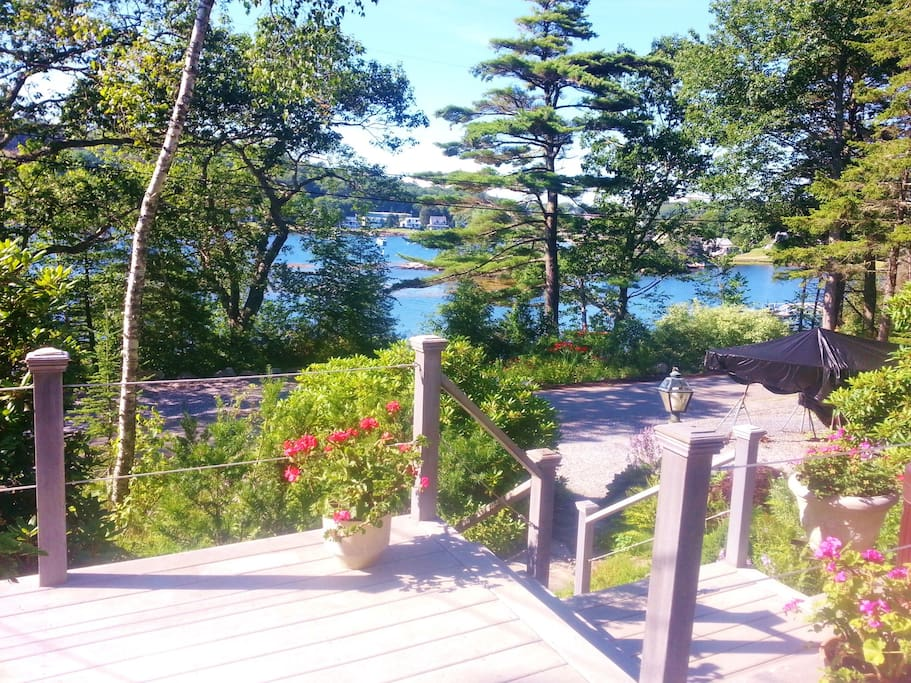 View from the porch to the Cove