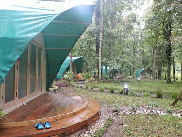 Glamping Hejo Forest Ciwidey Bandung Indonesia