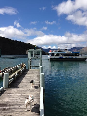 Cosy Chalet in the Pelorus Sound